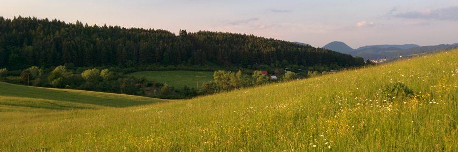 Žilinský Hájik