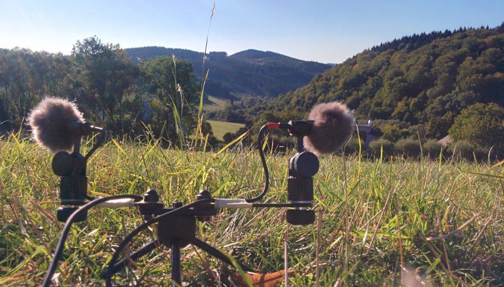 Zvuky prírody