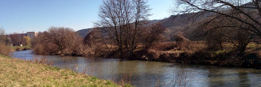 Rieka Nitra v Partizánskom